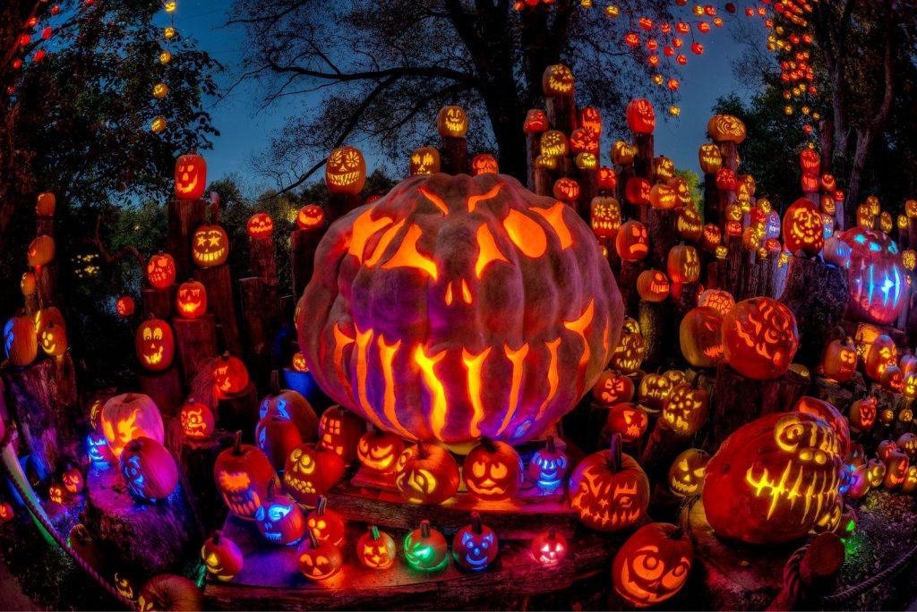 The Jack-o-lantern photo by Frank Grace